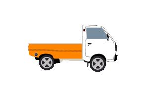 Pickup Type